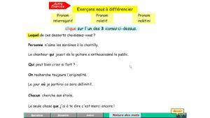 exercice de français pronoms interrogatif relatif indéfini